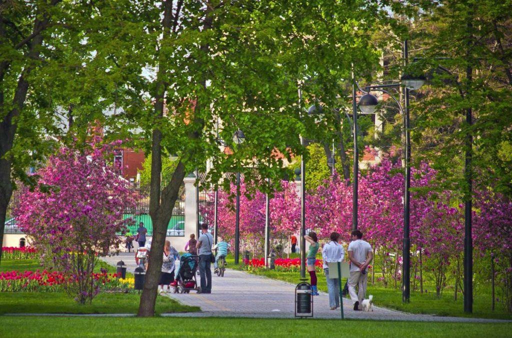 Весна в Краснодаре фото