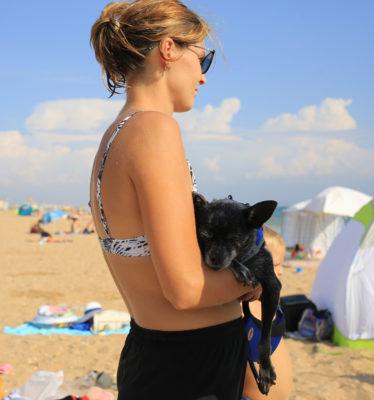 Даже с собачкой приехали на морской пикник